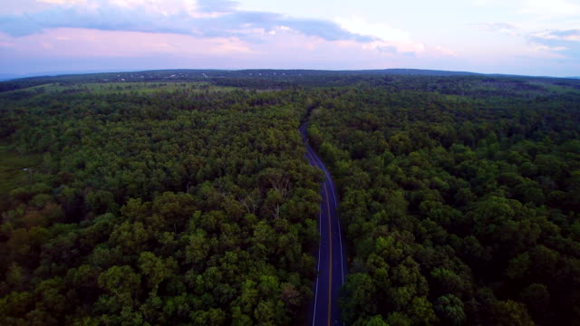 The police stopped the violator on the Long Pond Road, Pennsylvania, Poconos, USA. Aerial drone video. video