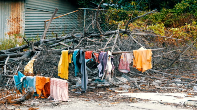 The poor dry things on the branches on trees. Poor homeless people dry their things on the streets of the city The poor dry things on the branches on the trees. Poor homeless people dry their things on the streets of the city hungry child stock videos & royalty-free footage