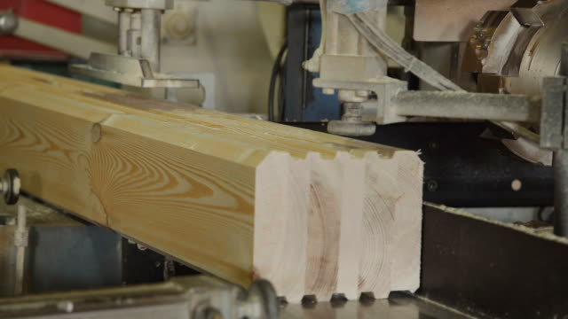 The production line for wood. Woodworking industry video