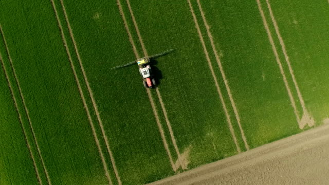 The Protection Of Plants.Tractor Spraying A Green Wheat Field. Aerial View video