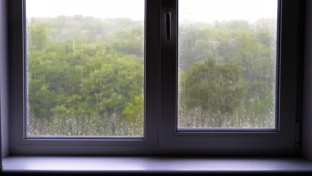 vídeos de stock, filmes e b-roll de a chuva fora da janela - janela