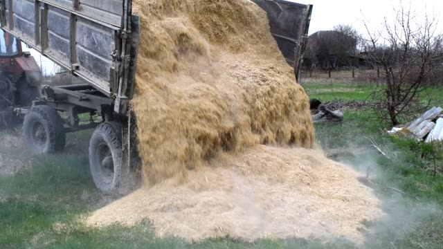 The rash of rice waste from the body of the trailer video
