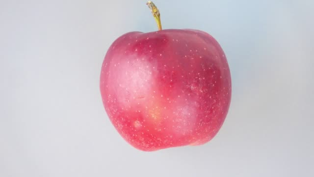 the red apple rotates in a circle. fruit. harvest. video. - target australia stock videos & royalty-free footage