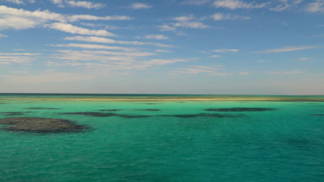 the reefs in the turquoise waters of the red sea - sky diving video stock e b–roll