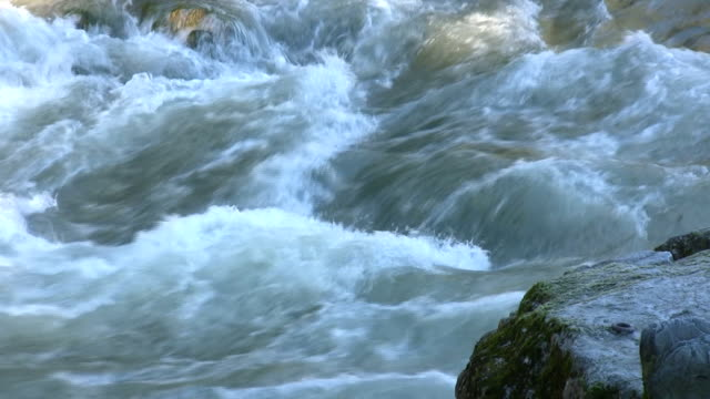 The river, Vancouver, Canada video