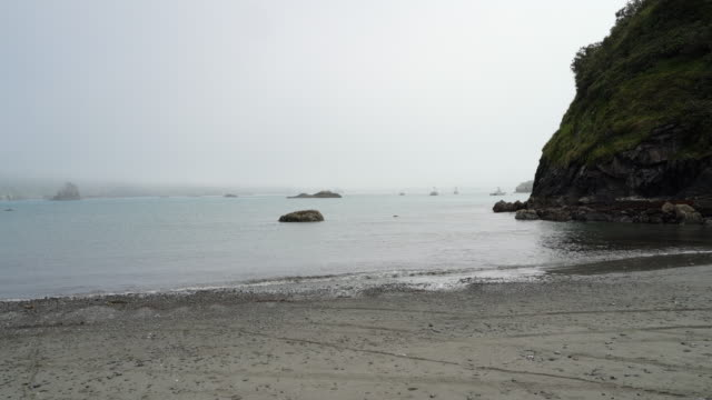 The rocky shore of Pacific Ocean near Trinidad, West Coast, California. Foggy calm day.