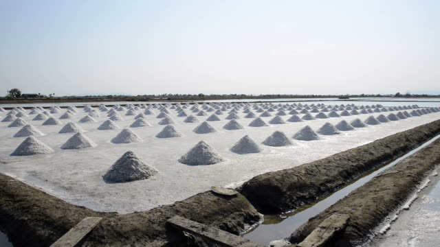 The salt farms industry, Salt making In a large area video