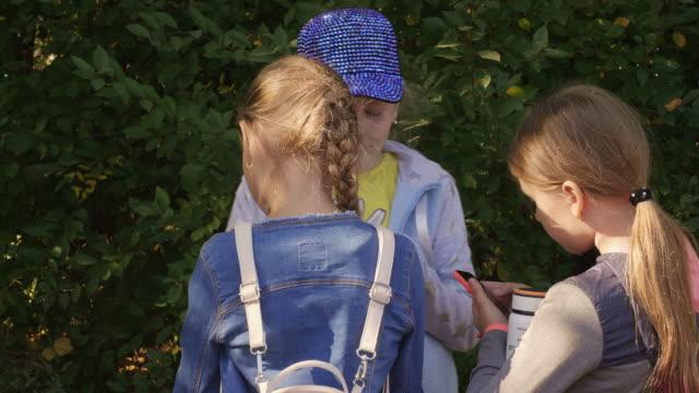 açık havada duran ve yeşil bush arka planda park konuşurken kız öğrenciler - i̇nsan sırtı stok videoları ve detay görüntü çekimi