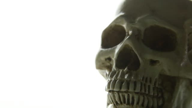 The skull on glow light background camera movement. skull on glow light background camera movement. physiology stock videos & royalty-free footage