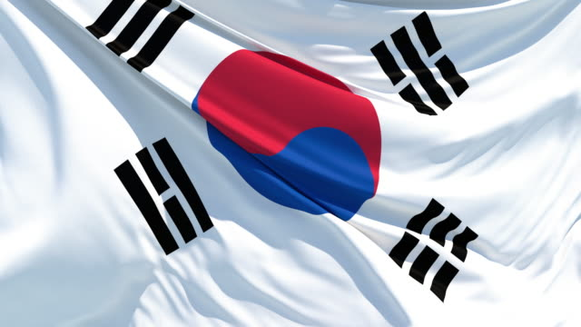 the south korean flag fluttering in the wind - bandiera nazionale video stock e b–roll
