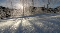 istock The sun is shining through the frozen trees. Sunrise in the mountains. Gimbal stabilized shot 1144107415