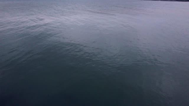 поверхности каспийского моря в иране - спокойная вода стоковые видео и кадры b-roll