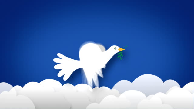 The Symbol Of Peace Bird Zooms In, HD Loopable video