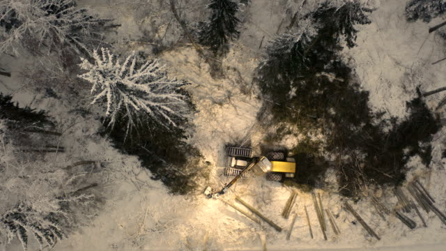The top view of the big log grappler truck The top view of the big log grappler truck cutting some logs in the forest on a winter season construction equipment stock videos & royalty-free footage