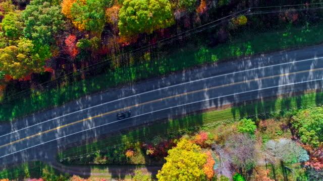 die draufsicht auf der straße in den bergwald in appalachian, poconos, pennsylvania, mit herbstlaub. luftbild-drohne video. - pennsylvania stock-videos und b-roll-filmmaterial