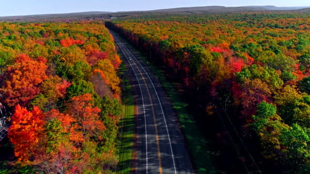 The top view on the road in the mountain's forest in Appalachian, Poconos, Pennsylvania, with fall foliage. Aerial drone video. The top view on the road in the mountain's forest in Appalachian, Poconos, Pennsylvania, USA, during the colorful fall foliage season. Aerial drone 4K UHD video. Panoramic backward and descending camera motion back to back stock videos & royalty-free footage