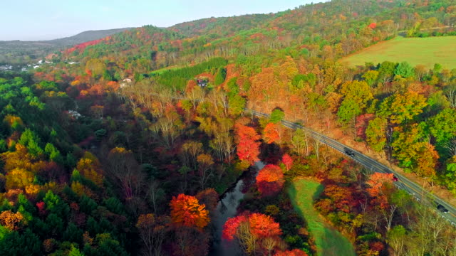 the top view on the road in the mountain's forest in appalachian, poconos, pennsylvania, with fall foliage. aerial drone video. - горы поконо стоковые видео и кадры b-roll