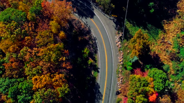 The top view on the road in the mountain's forest in Appalachian, Poconos, Pennsylvania, with fall foliage. Aerial drone video. video