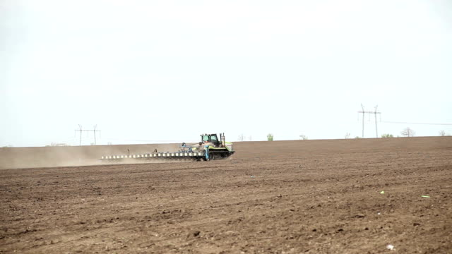 The tractor sows seeds of sunflower field video