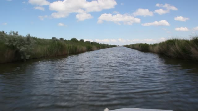 The traffic on the channel. Canal banks are overgrown with reeds video