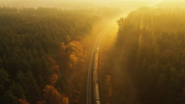 The train goes through the autumn foggy forest towards dawn. 4k drone view