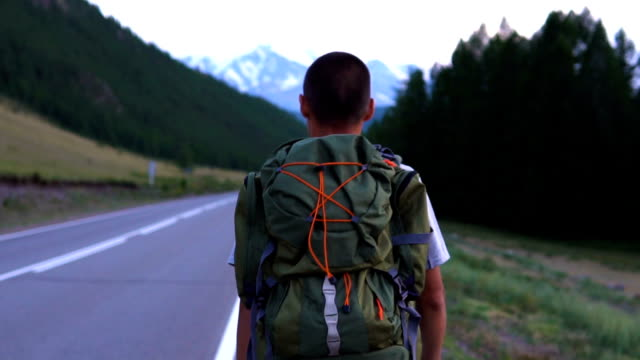 the traveler is trying to stop the car. - viaggiare zaino in spalla video stock e b–roll