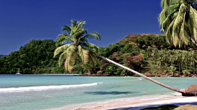 the tropical beach - antsiranana video stock e b–roll