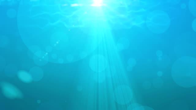 The underwater world video