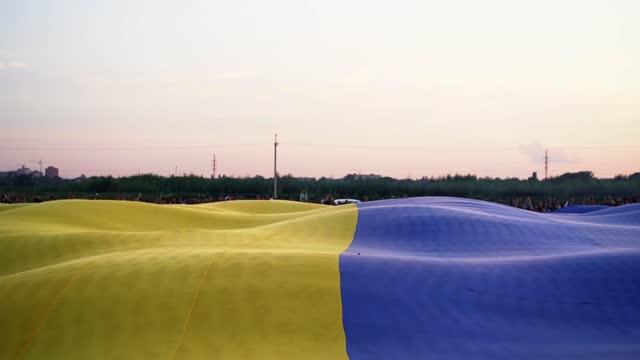 vídeos de stock, filmes e b-roll de a grande bandeira desenrolada da ucrânia tremula ao vento - ucrânia