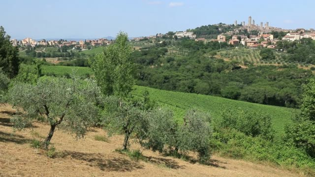 The village of San Gimignano in Tuscany. Italy.