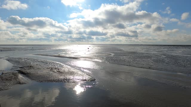 the wadden sea at low tide at the marina of schiermonnikoog in the netherlands - илистая пойма стоковые видео и кадры b-roll