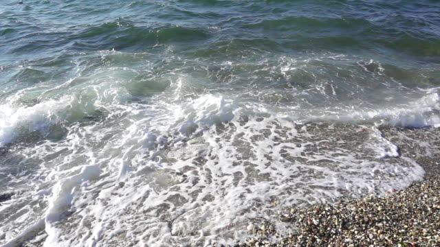 The wave rolls over the shore and the shadow of a seagull slow motion video