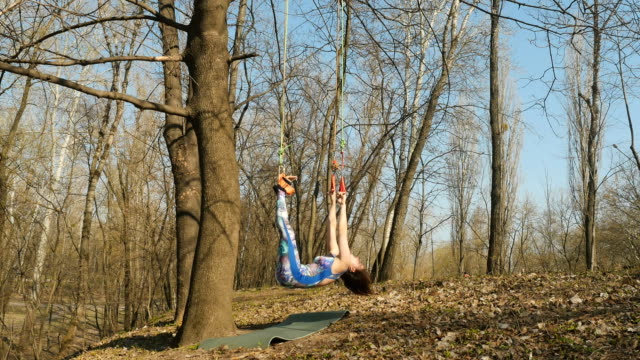 The woman hangs on the ropes on tree in training aerogravity Young woman practicing aerogravity in the park. The woman makes physical exercises on the ropes on tree. Flexible female hanging on the ropes and stretching her body and muscles. She's moving slowly and accuracy. arthropod stock videos & royalty-free footage