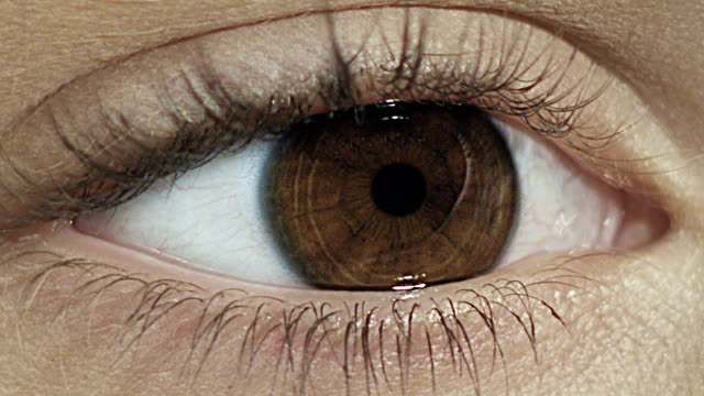 The Women's Eye. Close-up video