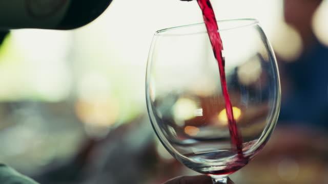 vídeos de stock e filmes b-roll de there's always time for wine - vinho