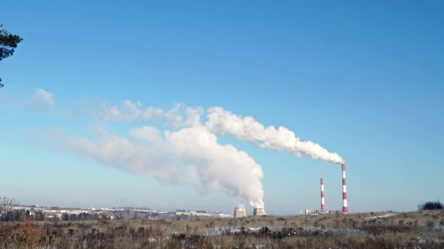 thermal power plant or a factory with smoking chimneys and a solitary tree - centrale termoelettrica video stock e b–roll