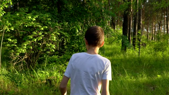 stockvideo's en b-roll-footage met slow motion close-up: een dunne jongen, een tiener in een wit t-shirt, de avond boswandelingen. op een gegeven moment stopt hij en terug draait. het bos is prachtig verlicht door de zon. zonnige zomeravond. - wit t shirt