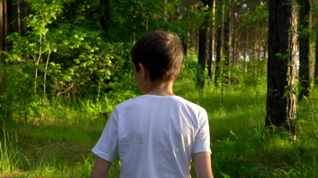 stockvideo's en b-roll-footage met slow motion close-up: een dunne jongen, een tiener in een wit t-shirt, de avond boswandelingen. op een bepaald punt keert hij terug om te zien wie volgt hem. het bos is prachtig verlicht door de zon. zonnige zomeravond. - wit t shirt