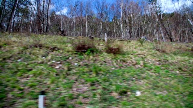 vídeos y material grabado en eventos de stock de este hermoso paisaje muestra el crecimiento de la hierba y árboles en una colina que es la limpieza del aire y atención para el aspecto del hermoso paisaje. - letra s