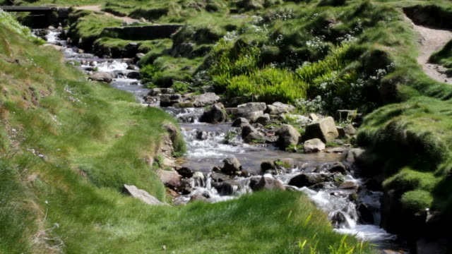 HD video rocky stream fast flowing Cot Valley Cornwall video