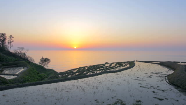 A Thousand Rice Paddies in Shiroyone,Ishikawa,Japan video