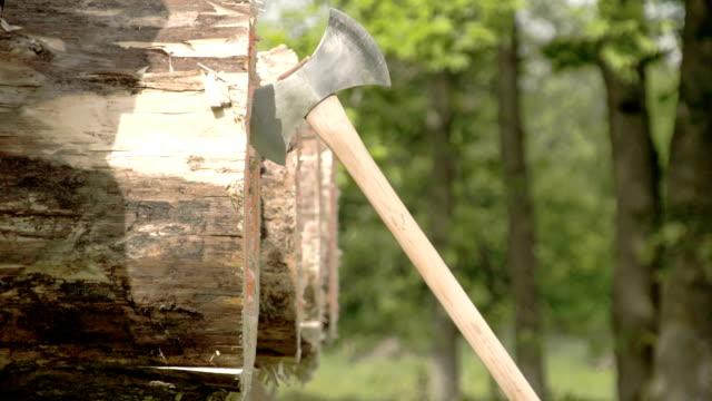Three axes thrown on a circle log video