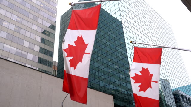 three canadian flags are waving in front of glass building - canada flag stock videos & royalty-free footage
