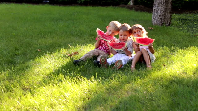 Three children eat watermelon on the grass in Park Three funny little kids are eating watermelon in summer Sunny Park sitting on green grass. Large family with children with watermelon at a picnic. watermelon stock videos & royalty-free footage