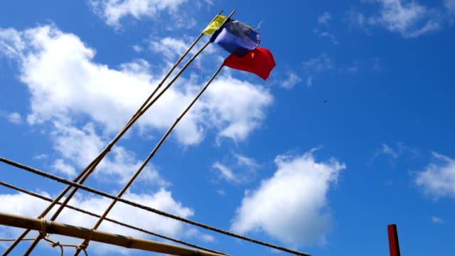 Three Color Flags on Beach Against Blue Sky video