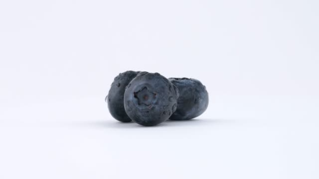 vídeos de stock e filmes b-roll de three fresh blueberries berries slowly rotating on white background. isolated. loopable. close up. macro. - vacínio