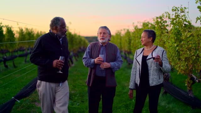 Three friends tasting the red wine at the winery in Long Island, New York State, USA. video
