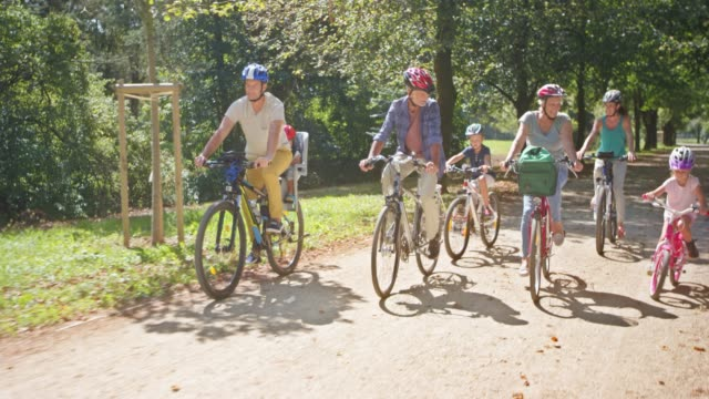 ds three generations cycling in the sunny park - 60 69 anni video stock e b–roll