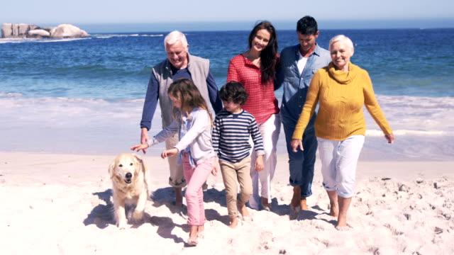 Three generations family standing together video