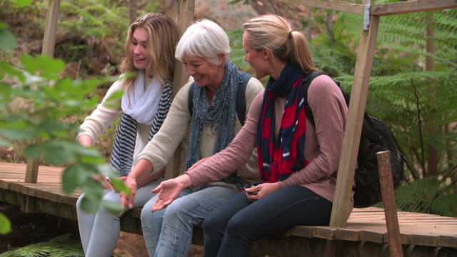 Three generations of women sitting on a bridge in a forest video
